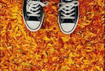 Converse con Colours / Converse con Colours