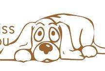 transfer dog