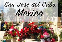 Mexico Dreams / This is a Dream board for all your Mexico tips and tricks for being a great traveler and explorer! Quick and easy guides, great photo spots, routes, they are all welcome. Get inspiration from other pins and see places you never thought of!