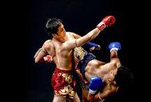 Boxe/MMA