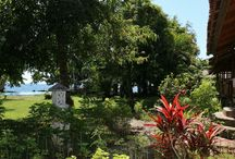 Mapia Resort / a lush tropical garden and a pool await you here