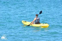 Activities / Los Cabos, es un destino donde el Pacífico y el Mar de Cortés se encuentran para ofrecer una variedad única de actividades que satisfacen los gustos más variados y exigentes: pesca deportiva de 'picudos', campos de golf de primera, deportes acuáticos como buceo, esnórquel y kayak  y mucho más. / by Los Cabos Tourism