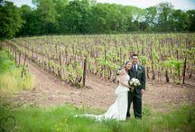 Sand Castle Winery / Wedding reception at Sand Castle  Winery, May 2015