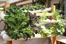 Unique Gardening Spaces / As a fan of container and raised bed gardening, here are some unusual ways to garden in a small space.
