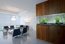 Interior - Aquarium