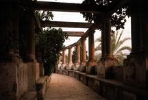 Jardin / El Jardin de la Fundación