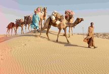 Incredible Rajasthan Tour