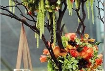 flower arrangements / by Susan Forbes