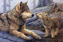 Волки, собаки