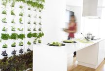 green living / mindful eco coexistence