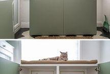 cat playbox
