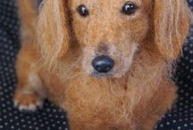 Gravhund - Dachshund