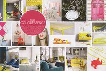 Pure Colorescence / On fait ressortir les couleurs, fluo de préférence, en les associant à des bases neutres (blanc, beige)!