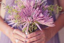 Colors: Pinks & Purples