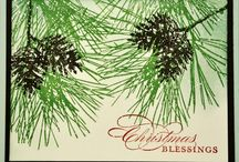 SU - Ornamental Pine / by Sue Cartwright