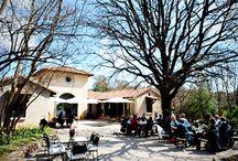 Avianto Cafe Cielo