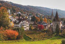 Zug my town