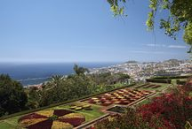 Private Tours - Madeira Island / Best private tours in Madeira Island