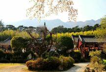 한국 정원