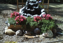 Favorite Places & Spaces / My backyard oasis, our sons home in Arizona and our daughters home in Texas  / by Valerie Osborn