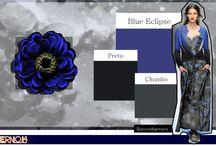 Colour Focus / Cores, Harmonias e Combinações
