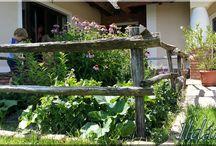 Bontott gerenda / Bontott gerenda, felújított antik faanyag, gerenda, pórfödém, fafödém