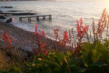 kendi çekimlerim / deniz manzarası
