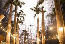 Amanda & Doug's Palmilla Wedding / Wedding Coordination: Amy Abbott Events | Photography: Photo by Julieta | Venue: Club 96 | Rentals: Del Cabo Event Design | Flowers: Pina Hernandez | Cake: SWEET DREAMS CABO | Band: Kilometro Band
