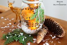 Natural Scents for Home / Essential oils, Fruits & Spices.