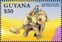 Guyana Stamps