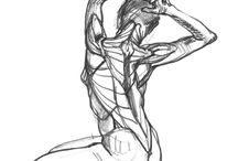 Anatomía Artistica