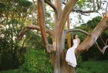 Island Forest and Countryside Weddings / The vibrant colors and organic terrain of Hawaii's lush forests, fields, and countrysides offer unique and stunning backdrops