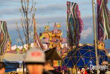 daydream festival