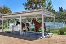 Refugios caballos