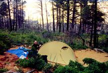 ~Backpacking, Hiking, and Camping~ / by Bonnie