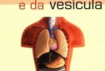 Limpeza fígado