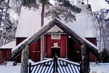 White and Red Winter