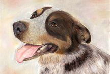 Pet portraits / Animals