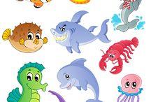 tengeri állatok
