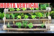 Horta(garden)