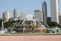 Chicago Trip  / by Xtal Em