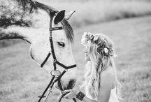 Foto s koňmi
