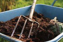 Clay soil tips