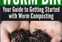 starting a worm bin