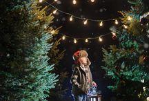 PHOTOGRAPHY - Christmas Minis