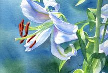 Watercolor: flowers