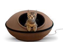 Cats Beds and Sofas