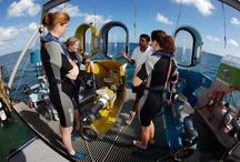 The Subscooter, your own submarine! / Une invitation à découvrir seul ou en couple, les fonds marins tout en savourant le plaisir de piloter soi-même son propre scooter sous-marin.