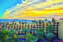 The Guest Experience / Experience the sights of the Renaissance Palm Springs, through the camera of our guests!