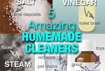 Cleaning Products / by Barbara Schiavone